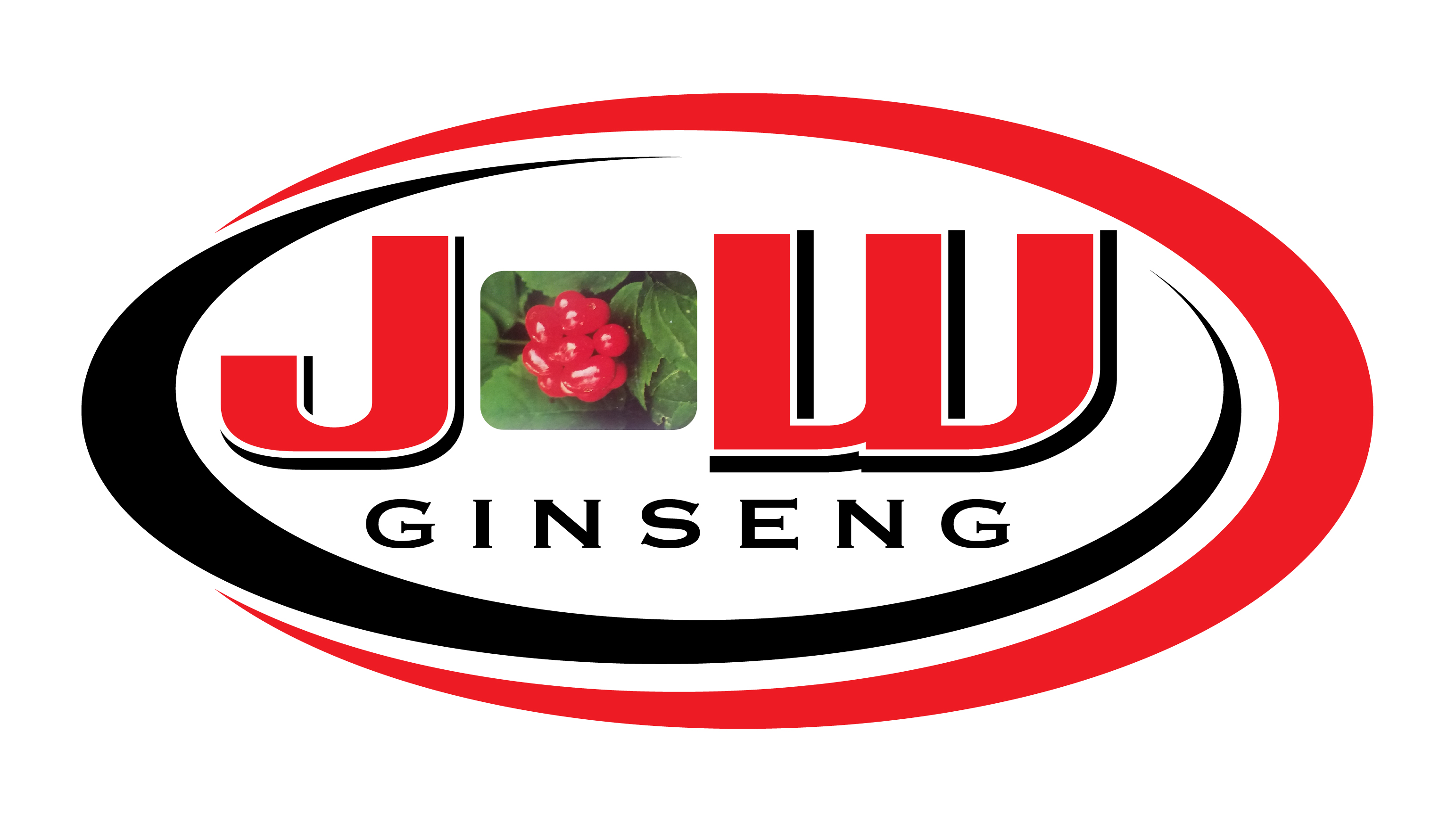 Put a Ginseng Picture Here